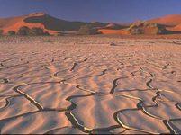 Africká sucha