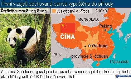 Grafika Pandy v Číně