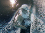 """<b>6. 2. - Phelps nesmí plavat</b> - Nejlepší sportovec světa roku 2008 pyká za skandál kolem kouření marihuany. Michael Phelps, ačkoliv se za své chování omluvil, nesmí tři měsíce závodit. Amerického olympionika distancoval samotný národní plavecký svaz USA Swimming, přestože Phelps marihuanu požil mimo sezonu, v době, kdy jej nikdo nekontroloval. <br><b>Další podrobnosti si </b><A href=""""http://aktualne.centrum.cz/sportplus/ostatni-sporty/ostatni/clanek.phtml?id=628903""""><b>připomeňte ve článku zde</b></A>"""