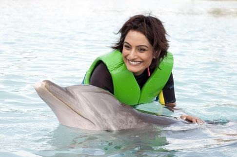 Finalistky Miss Universe pózovaly s delfíny