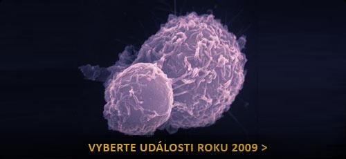 roč-rakovi