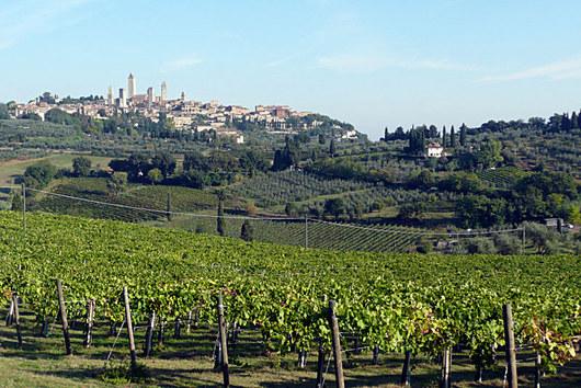 Toskánsko, stopadesát kilometrů na sever od Říma. Vinice, lanýže, kanci.