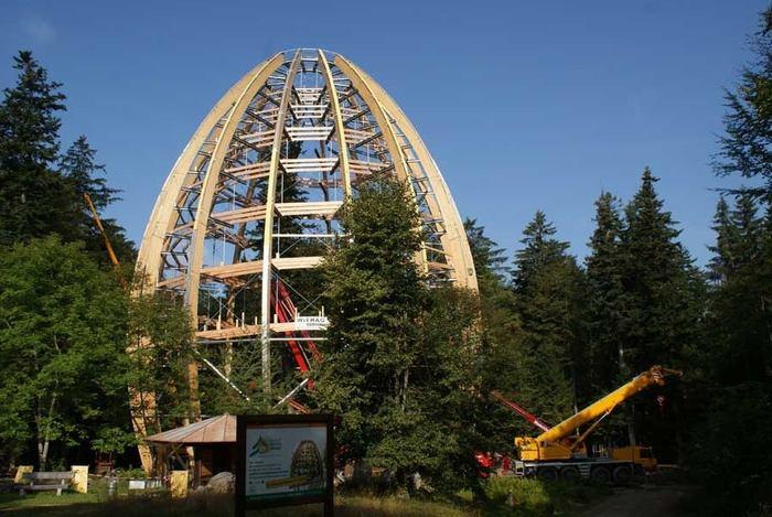 Dřevěná kupole tyčící se nad bavorským lesem