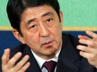 Japonsko: Vlka samotáře střídá jestřáb - Aktuá