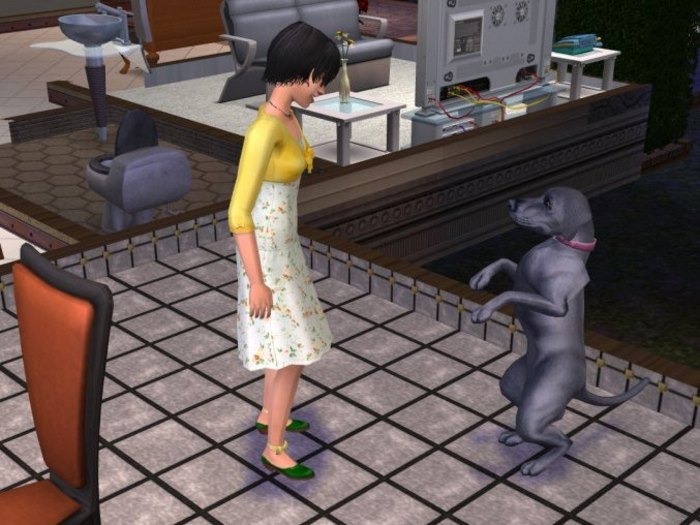 The Sims 2: Mazlíčci