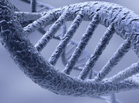 DNA - �roubovice - Thinkstock 2