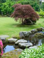 Japonsk� zahrada - �vod 1