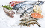 Ryb� maso