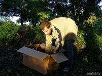 Vede válku s velkochovy: Unáší slepice a chová je doma