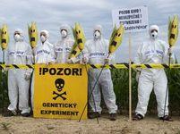 Protest proti GMO